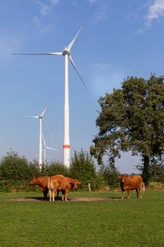 Windkraftanlage Lager Feld